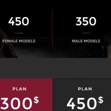 portfolio_model-agency